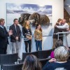 Vernissage - Animal Art 2015 • 36 - 64
